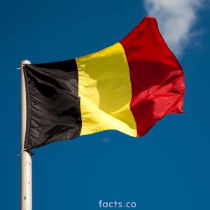 belgiumflagpicture5