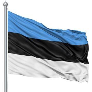 e37bf2f852f213e00d617807725194da--estonia-flag-color-meanings.jpg
