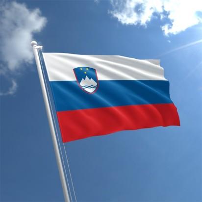 slovenia-flag-std.jpg
